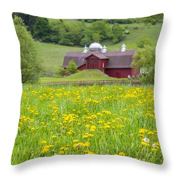Throw Pillow featuring the photograph The Red Barn And Dandelions by Paula Porterfield-Izzo