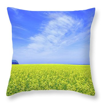 The Red Barn Throw Pillow by Keith Armstrong