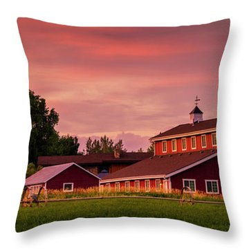 Throw Pillow featuring the photograph The Red Barn - Panoramic by TL Mair