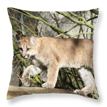 Throw Pillow featuring the photograph The Red Carpet by Laddie Halupa
