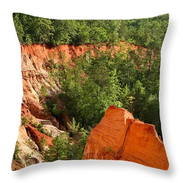 The Red Dirt Of Georgia Throw Pillow
