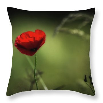 The Red Dot Throw Pillow