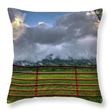 Throw Pillow featuring the photograph The Red Gate by Douglas Stucky