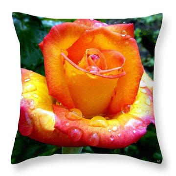 The Red Gold Rose Throw Pillow by Will Borden