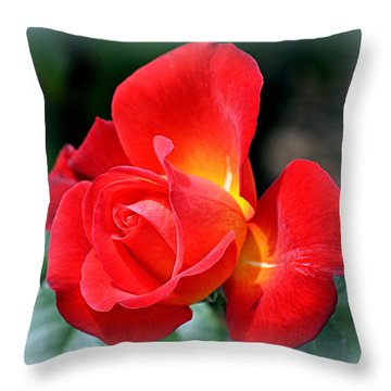 The Red Rose Throw Pillow by AJ  Schibig