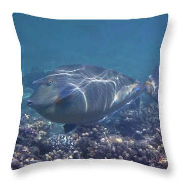 Throw Pillow featuring the photograph The Red Sea Bluespine Unicornfish Closeup by Johanna Hurmerinta