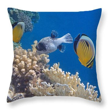 The Red Sea Underwater World Throw Pillow