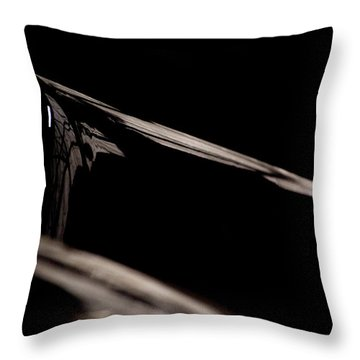The Reflection Throw Pillow by Paul Job