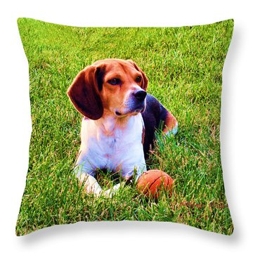 The Reserved Beagle Throw Pillow