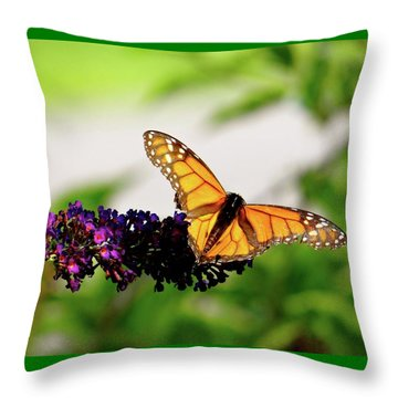 The Resting Monarch Throw Pillow