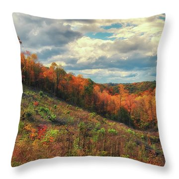 The Ridges Of Southern Ohio In Fall Throw Pillow