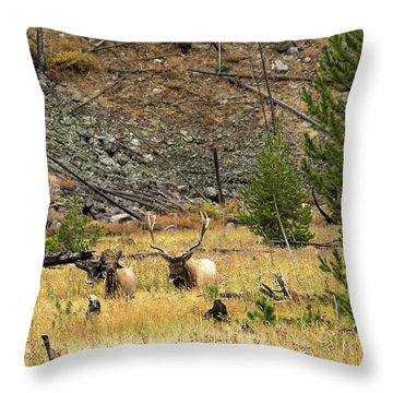 The Right Breeze Throw Pillow