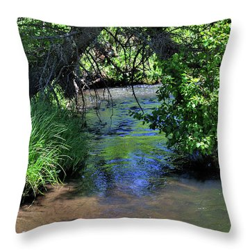 Throw Pillow featuring the photograph The Rio Chiquito by Ron Cline