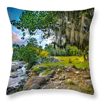 The River At Cocora Throw Pillow
