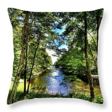 Throw Pillow featuring the photograph The River At Covewood by David Patterson