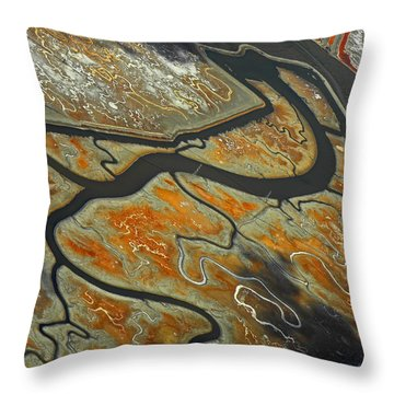 The River Bends IIi Throw Pillow