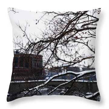 The River Divide Throw Pillow by Linda Shafer
