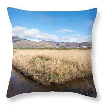 Dingle Peninsula Throw Pillows