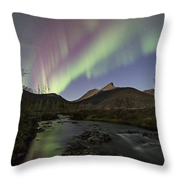 The Creek I Throw Pillow