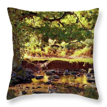 The River Lin , Bradgate Park Throw Pillow by John Edwards