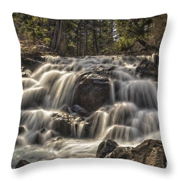 The River Of Time Throw Pillow