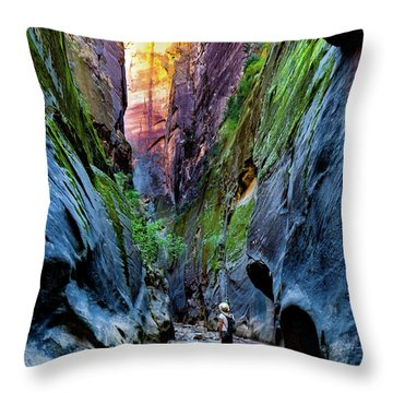 The Riverbend Throw Pillow