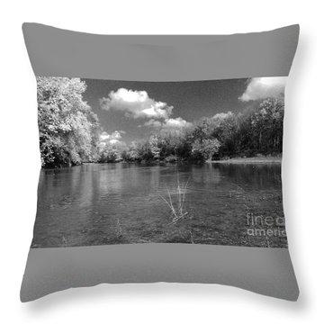 The Rivers Bend  Throw Pillow by Scott D Van Osdol