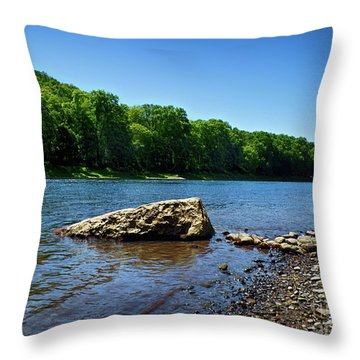 The River's Edge Throw Pillow by Mark Miller