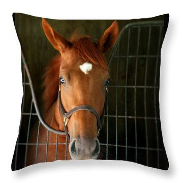The Roan Throw Pillow