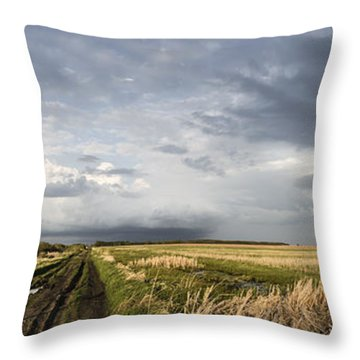 The Road Is Never Easy Throw Pillow