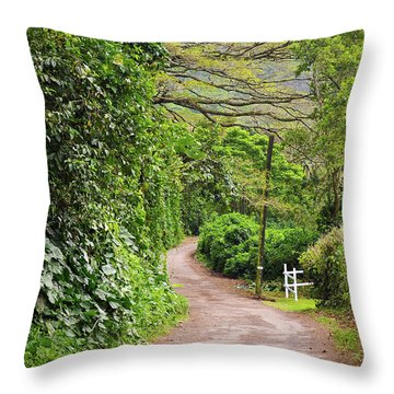 The Road Less Traveled-waipio Valley Hawaii Throw Pillow