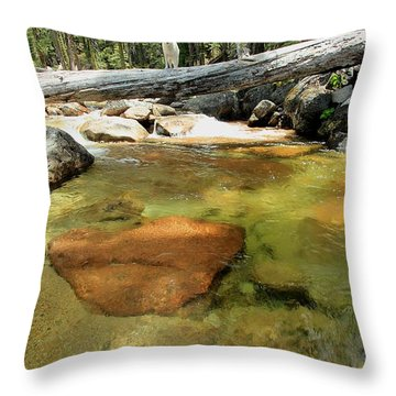 Throw Pillow featuring the photograph The Road Less Travelled  Portrait by Sean Sarsfield