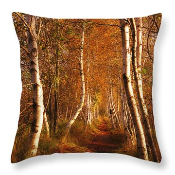 The Road Not Taken Throw Pillow