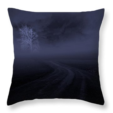 Throw Pillow featuring the photograph The Road by Robert Geary