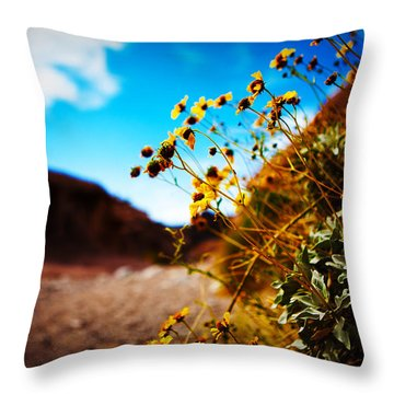Throw Pillow featuring the photograph The Road To Awe by Ryan Smith