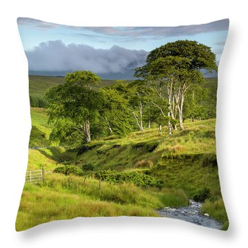 The Road To Carndonagh Throw Pillow by Joe Doherty