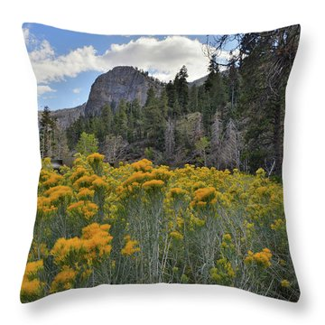 The Road To Mt. Charleston Natural Area Throw Pillow