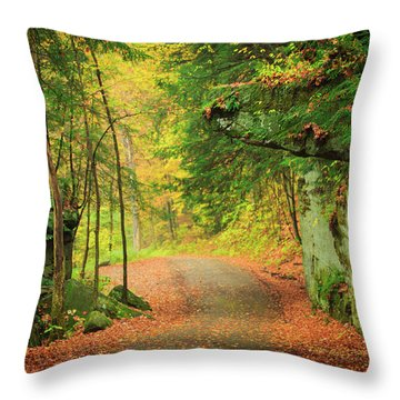 The Road To The Mill  Throw Pillow