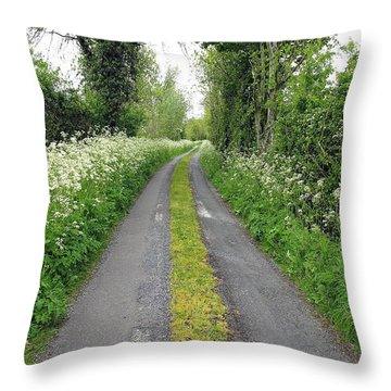 The Road To The Wood Throw Pillow