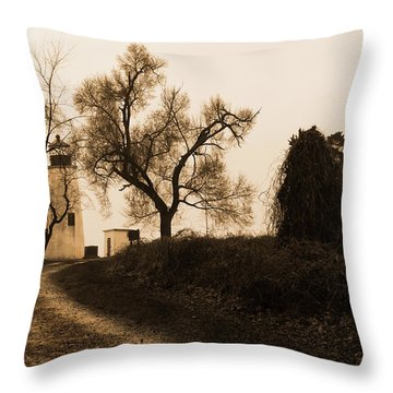 Throw Pillow featuring the photograph The Road To Turkey Point Lighthouse by Dennis Dame