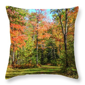 The Road Updated Throw Pillow