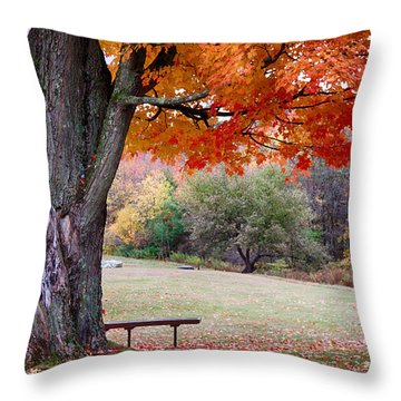 The Robert Frost Farm Throw Pillow by Jeff Folger