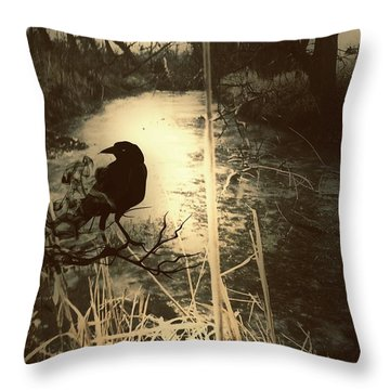 The Robin And The Wren Are Flown. Winter Crow Throw Pillow