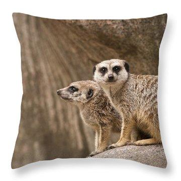 The Rock Of Meerkats Throw Pillow by Chad Davis