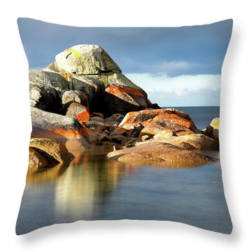 The Rocks And The Water Throw Pillow
