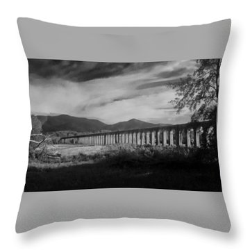 The Roman Aqueducts Throw Pillow