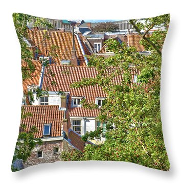 The Rooftops Of Leiden Throw Pillow