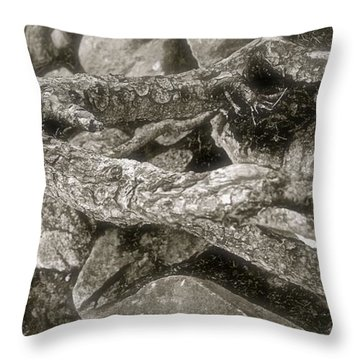The Root Of It All Throw Pillow