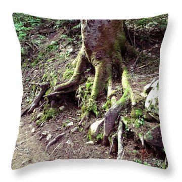 The Root Of The Matter Throw Pillow