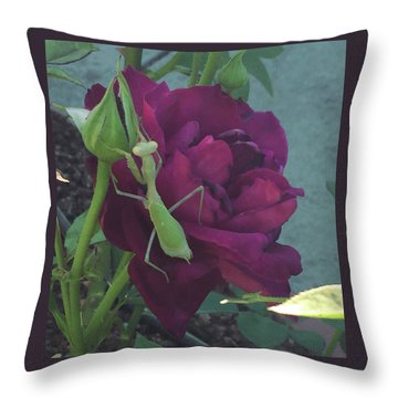 The Rose And Mantis Throw Pillow
